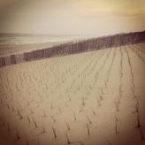 Loveladies Long Beach Island, NJ